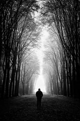 Selfie (gambajo) Tags: white black fog deutschland natur pflanzen menschen orte bäume brühl selfie darius phonar phonarnation