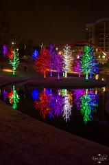 20131204_Vitruvian Park_0098.jpg (Kari Silva Photography) Tags: park christmas trees holiday colors lights nikon texas tx christmaslights addison holidaylights vitruvian d5100 vitruvianpark
