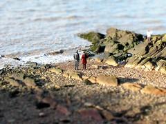 Clevedon beach mini-fake (uncoolbob) Tags: beach digital gimp clevedon tiltshiftminiaturefake canonpowershotsx110is