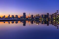 Symmetry, Tokyo Twilight (45tmr) Tags: japan night landscape tokyo twilight cityscape nightscape pentax tokyotower 東京 夜景 東京タワー k5 pentaxk5