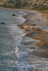 PET 16 (Polis Poliviou) Tags: nature bay nationalpark fishing europe cyprus tourist resort agriculture peninsula cipro paphos polis pafos zypern aphroditesrock kypros chypre latsi petratouromiou chipre kypr cypr cypern  kipras ciprus republicofcyprus   rockofthegreek  poliviou polispoliviou   cyprusinyourheart    sayprus chipir wwwpolispolivioucom yearroundisland cyprustheallyearroundisland polispoliviou2014