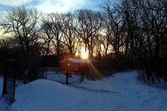 Sunrise over Hal Tyrell Trailside Nature Center (Ted & John Koston) Tags: winter snow cold ecology wind cook freeze blizzard tyrell meteorology deepfreeze naturecenter koston trailside forestpreservedistrictofcookcounty ccfpd countyry haltyrelltrailsidenaturecenter