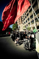 10th Annual Ashura Procession  - Australia 43