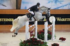 Antonio Frutuoso de Melo & Ananaz (yasminabelloargibay) Tags: horse caballo cheval gray cavalier cavalo pferd equestrian stallion equine csi hest showjumping hpica horserider antares showjumper equestrianism hipismo casasnovas ananaz antoniofrutuosodemelo