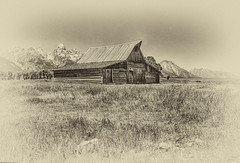 An Antique Loo