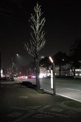 Kikunoo-Dori, Sannomaru 1 chome, Nagoya (kinpi3) Tags: street japan night nagoya gr ricoh sannomaru