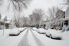 Snow-8039