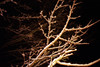 Snow (somekeepsakes) Tags: schnee winter snow night analog lca nacht colorsplashflash analogue wuppertal dunkel kodakfarbwelt200