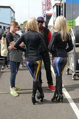 BTTC Thruxton 2014 (My Risky Business) Tags: girls sexy babes motorracing btcc pitbabes gridgirls