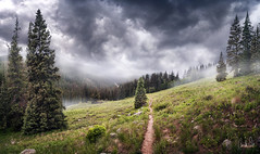 North Tenmile Creek (Brock Whittaker Photography) Tags: trees panorama storm rain fog composite clouds creek canon landscape photography colorado mood moody hiking 28mm north stormy olympus trail alpine rainy valley ethereal fir brock 5d tundra frisco noble taiga grassy f35 whittaker maximalism tenmile