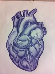 Anatomical Heart Tattoo Designs 125 (tattoos_addict) Tags: tattoo heart designs 125 anatomical hearttattoos