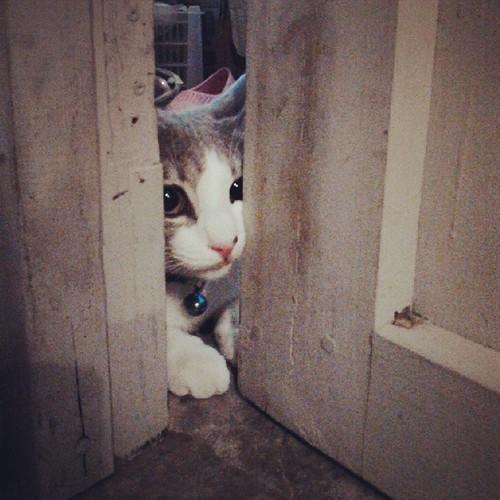ขุ่นแม่นู๋อยากเข้าห้องค่ะ ^^ #ตาหวาน