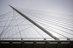 Calatrava - the Harp (genf) Tags: sun backlight sony calatrava brug harp a77 hoofdweg haarlemmermeer brudge hoofdvaart nieuwvennep