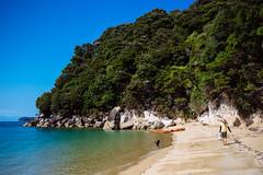 Abel Tasman National Park (dataichi) Tags: park new travel tourism beach cane outdoors kayak outdoor zealand national destination wilderness abel tasman
