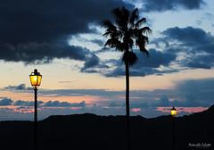 Sunset (antonellafalsetti) Tags: light sunset shot past canon600d