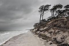 Storm-proof (Thomas Frejek) Tags: deutschland born balticsea ostsee weststrand mecklenburgvorpommern 2014 dars