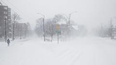 IMG_1217 (tkolos) Tags: winter cambridge snow storm boston canon massachusetts blizzard juno 70d snowpacolypse bosnow