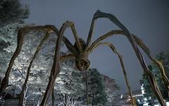 Roppongi spider (Claus Kjrsgaard) Tags: sculpture art japan night giant tokyo spider n