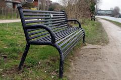 Bench (MalB) Tags: cambridge pentax cam k5