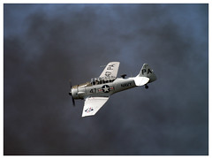 North American SNJ-5 Texan C/N 88-17955 (Aerofossile2012) Tags: aircraft harvard airshow trainer avion texan t6g snj 2014 northamerican cerny toratoratora ferté