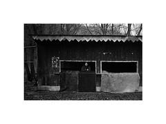 friend (Marek Pupk) Tags: life leica portrait blackandwhite bw film monochrome analog europe central documentary rangefinder xp2 slovakia ilford m6