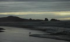 Praia Mole - Florianpolis - Brazil (Anderson Fregolente) Tags: brazil praia nature landscape mar florianpolis mole sul paisagens