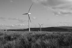 Wind Turbines from the Long Causeway above Todmorden (Richard Needham) Tags: blackandwhite monochrome landscape windturbine windfarm westyorkshire todmorden yor