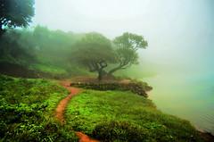 Mullayanagiri (Smevin Paul - Thrisookaran !! www.smevin.com) Tags: travel india mountain saint trekking paul photography shrine hill peak trail both muslims sufi pilgrimage baba highest hindus budan smevin thrisookaran smevins chikkamagalurchikmagalurchikkamagalurubiketripseptember2015bulletroyalenfieldmullayanagiriwesternghatsbababudangiri