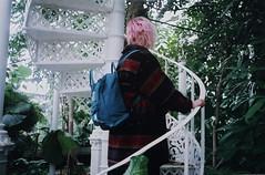 kpenhamn (-hille-) Tags: film analog 35mm copenhagen denmark minolta exploring greenhouse analogue botanicalgardens filmgrain