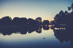 CHIO2016-05509-1.jpg (Wang Yibing) Tags: lake night landscape rotterdam kralingseplas