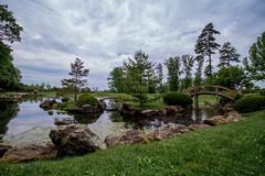 DA-6492 (tibahn) Tags: ohio garden japanese arboretum newark dawes