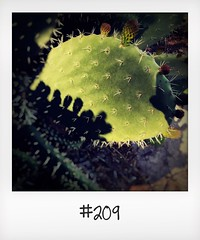 """#DailyPolaroid of 24-4-16 #209 • <a style=""""font-size:0.8em;"""" href=""""http://www.flickr.com/photos/47939785@N05/27350930570/"""" target=""""_blank"""">View on Flickr</a>"""