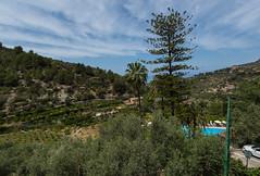 Es Moli - Hotel Room View (Peter J Dean) Tags: holiday hotel mediterranean view mallorca roomview balearicislands serradetramuntana esmoli canonef1635mmf28liiusm canoneos5dmarkiii may2016