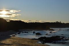 DSC_0066 (JP98AUS) Tags: beach scenery nsw water sunset