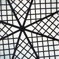 26 (ukneecorn) Tags: clr geometrical taxona enroute
