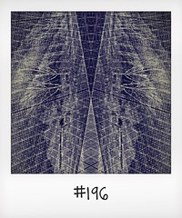 """#DailyPolaroid of 11-4-16 #196 • <a style=""""font-size:0.8em;"""" href=""""http://www.flickr.com/photos/47939785@N05/27435221816/"""" target=""""_blank"""">View on Flickr</a>"""