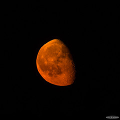 Waning Gibbous Moonrise (Astro☆GuiGeek) Tags: orange moon mountain france montagne lune moonrise alsace vosges t3i leverdelune 600d canonphotography eos600d canoneos600d rebelt3i astroguigeek