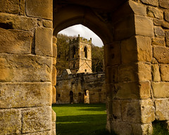 Mount Grace Priory(5) (S.R.Murphy) Tags: mountgracepriory arch wall architecture building englishheritage frame stonework ruins priory church yorkshire england