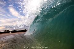 IMG_9172 copy (Aaron Lynton) Tags: beach canon hawaii big paradise surf waves sigma wave maui surfing spl makena shorebreak lyntonproductions