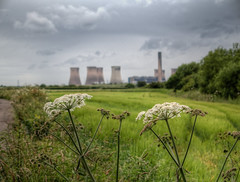 Moore nature reserve 01 HD jun 16 (Shaun the grime lover) Tags: summer chimney tower station ferry warrington industrial power cheshire towers moore parsley hdr fiddlers cooling lapwinglane