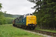 Deltic Class 55 007 'Pinza' approaching Levisham Station [NYMR] (soberhill) Tags: diesel gala pickering levisham pinza grosmont nymr 2016 deltic northyorkshiremoorsrailway class55 royalscotsgrey 55022 55007