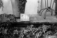 bicycle parking (troutfactory) Tags: blackandwhite bw film caf monochrome bicycle sign japan rangefinder  osaka analogue kansai ilforddelta400  minoh  bicycleparking 50mmnokton minoo   voigtlanderbessat