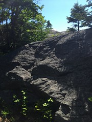 IMG_1741 (daach14@sbcglobal.net) Tags: usa vermont nature outdoor green photo trip travel sky blue woods trees forest beauty life moutain rock rocks view iphone6 panorama