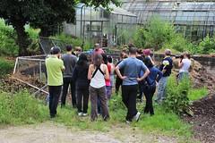 Team Building à la ferme, le 24 juin 2016