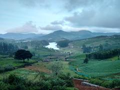 #earlymorning #mobilephotography #motog2 #landscape #nature #natural #beautiful (Srini 20) Tags: motog2 mobilephotography earlymorning landscape nature naturelovers beautiful ecologicaltour india tamilnadu