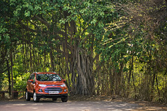 Ford EcoSport Goa Drive - 47 (Ford Asia Pacific) Tags: india ford smart car media goa automotive ap vehicle sync suv ecosport fordmotorcompany fordecosport fordapa mediadrive