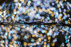 Winter Decorates 2 | 2 (francisling) Tags: blue decorations light yellow japan festive season 50mm tokyo airport aperture bokeh sony   f18  haneda      5n nex5