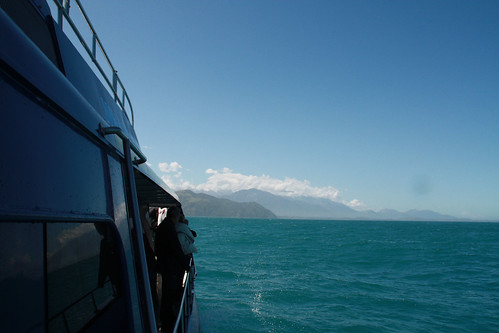 Kaikoura - Whale Watching - New Zealand Nov 2008