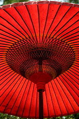 (cate) Tags: light red umbrella parasol greentea