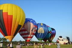 Stinky's Up Next (Francine Schumpert) Tags: people florida crowd repetition hotairballoons balloonfestival wethepeople lakeworth freedomflyer nikond5100 fordtruckspoloballoonfestival driftndreamballoon thunderstruckballoon flysiballoon stinkyballoon kwelangaballoon